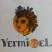Вермишель